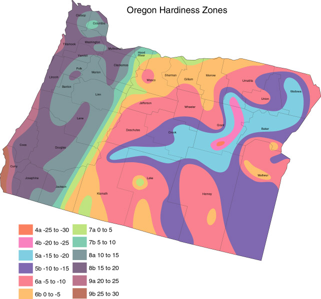 polar representation of the portland plant scenario Object moved this document may be found here trackingframe.