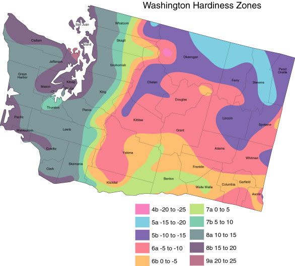 Northwest Berry Grape Information Network Weather - Us weather zone map